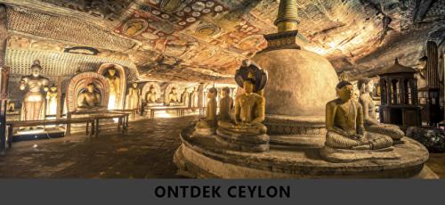 Treatments-Ceylon